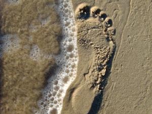Increase your SEO footprint.