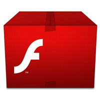 Adobe Flash Box