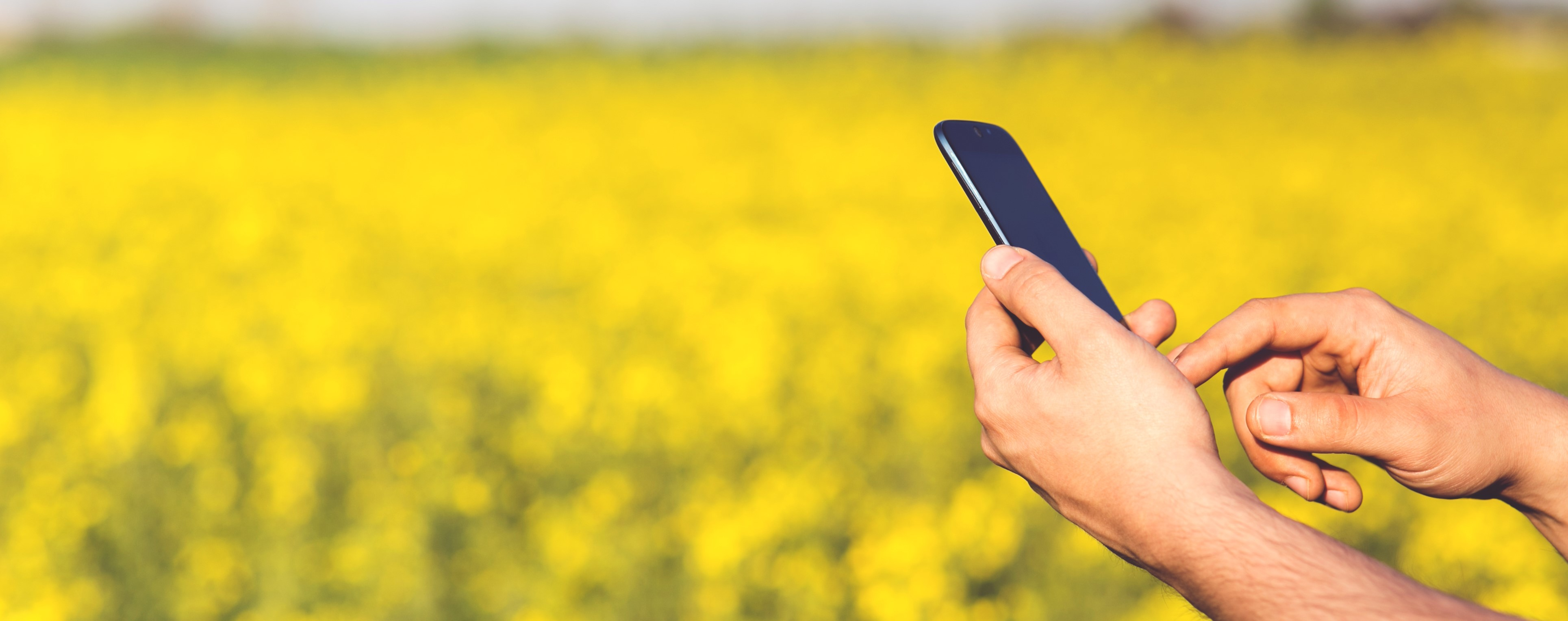 man-field-smartphone-yellow.jpg