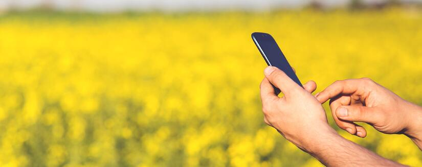 man-field-smartphone-yellow.jpg