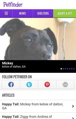 petfinder mobile optimization & responsive design social sharing buttons