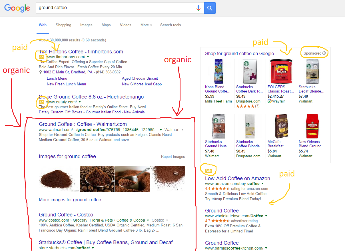 screenshot of organic search results & paid search results