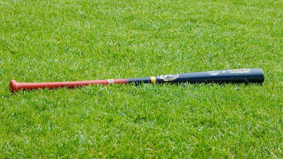 BaseballBat.jpg