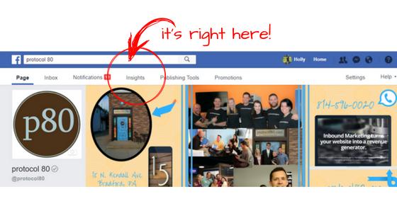 Facebook Insights Tool