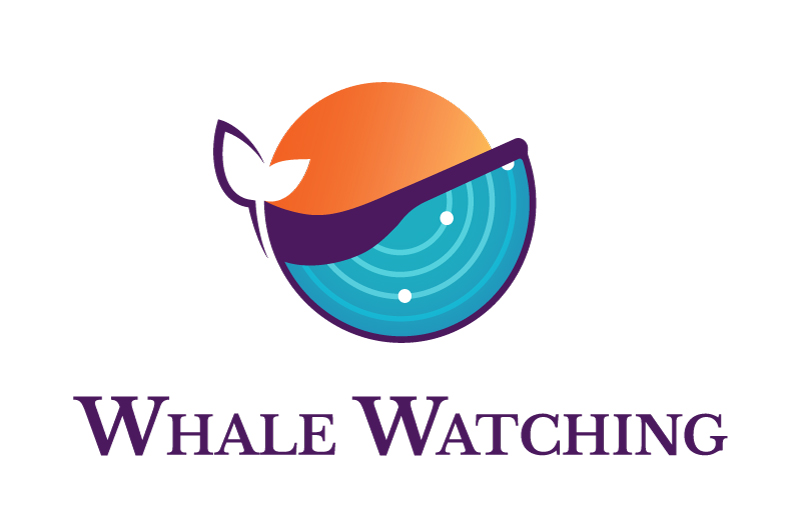 Whale Watching Ep. 1 -- Inbound Marketing Goal Setting